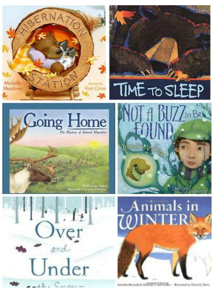 10 Kids Books & Activities about Hibernation and Migration