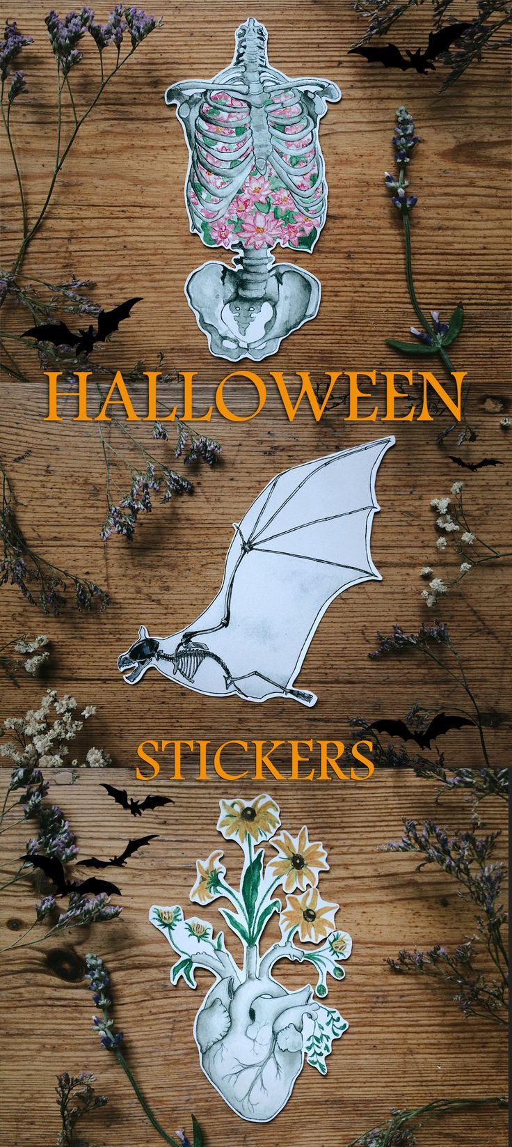 Perfect Stickers for Halloween! Anatomy and Skeleton! Bat, Real ...