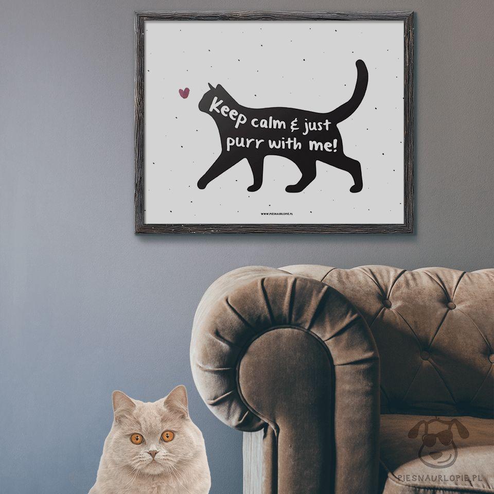 Keep Calm Cat Cat Poster Pet Poster Cat Print Pet Print