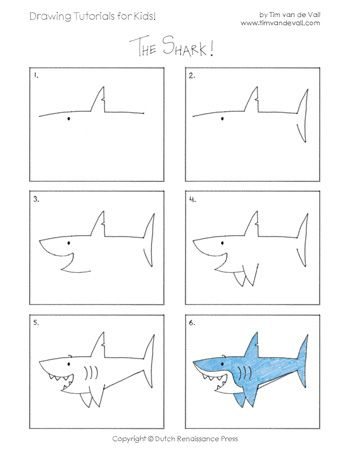 Learn How To Draw A Shark In This Easy Step By Step Tutorial