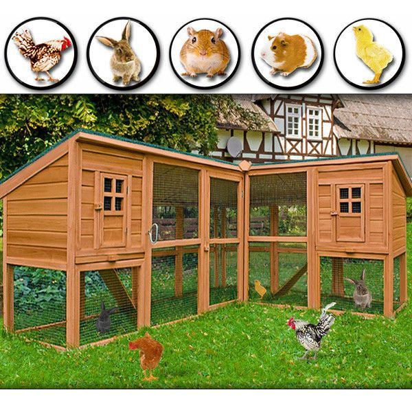 Pin On Bunny Toys And Hutch Ideas