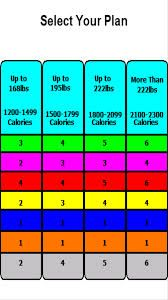 day fix container chart also fitness days rh pinterest