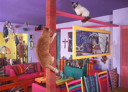 the cats house new place cat playground cat room cat furniture rh pinterest com