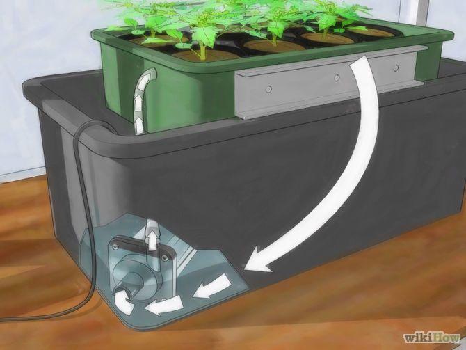 faire pousser des tomates hydroponiques aquaponie pinterest potager jardins et jardinage. Black Bedroom Furniture Sets. Home Design Ideas
