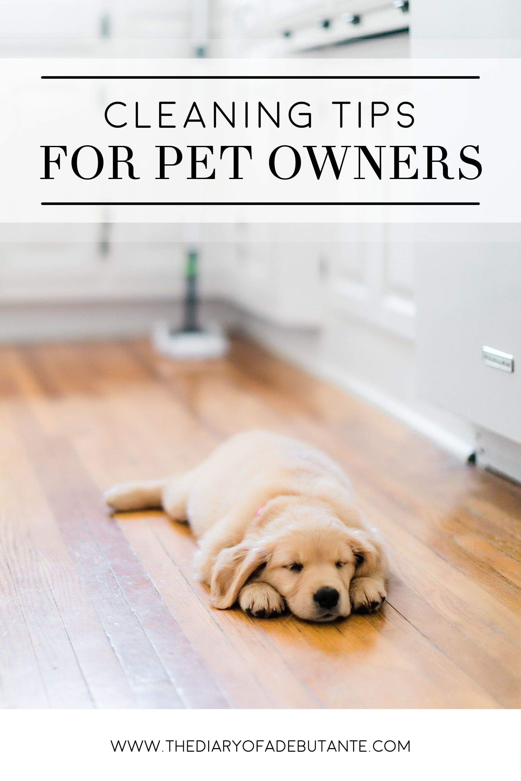 Pet Cleaning Hacks The Best Way To Clean Hardwood Floors With Pets Clean Hardwood Floors Pet Cleaning Cleaning Wood Floors