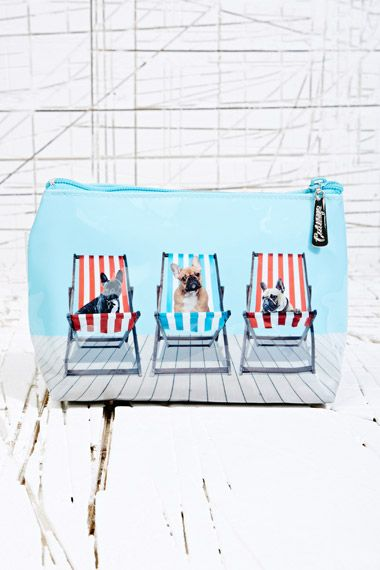 Dogs in Deckchairs