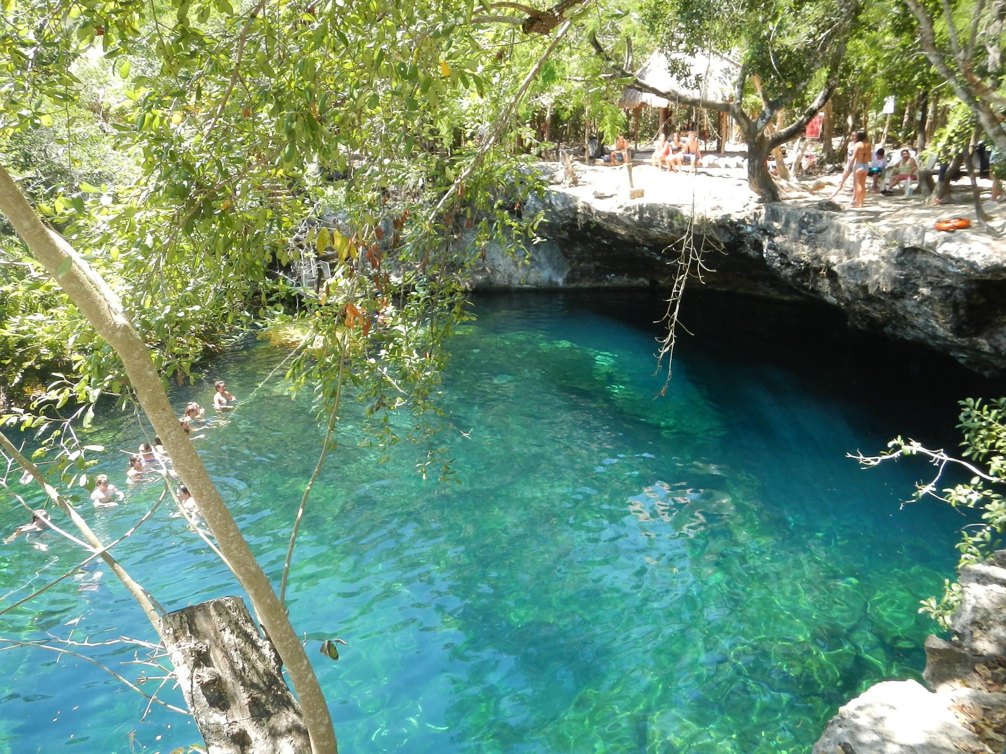 Cenote jardin del eden el eden o ponderosa riviera maya for Cancion en el jardin del eden