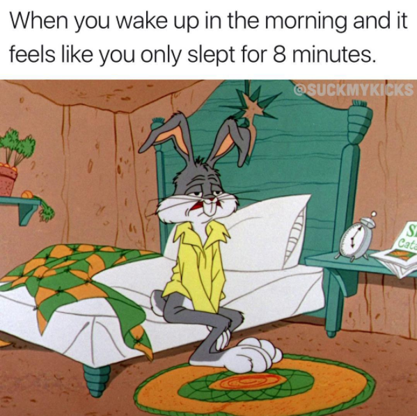 Wake Up Early So You Can Prepare For The Day Slowly Funny Memes Funny Pictures Funny