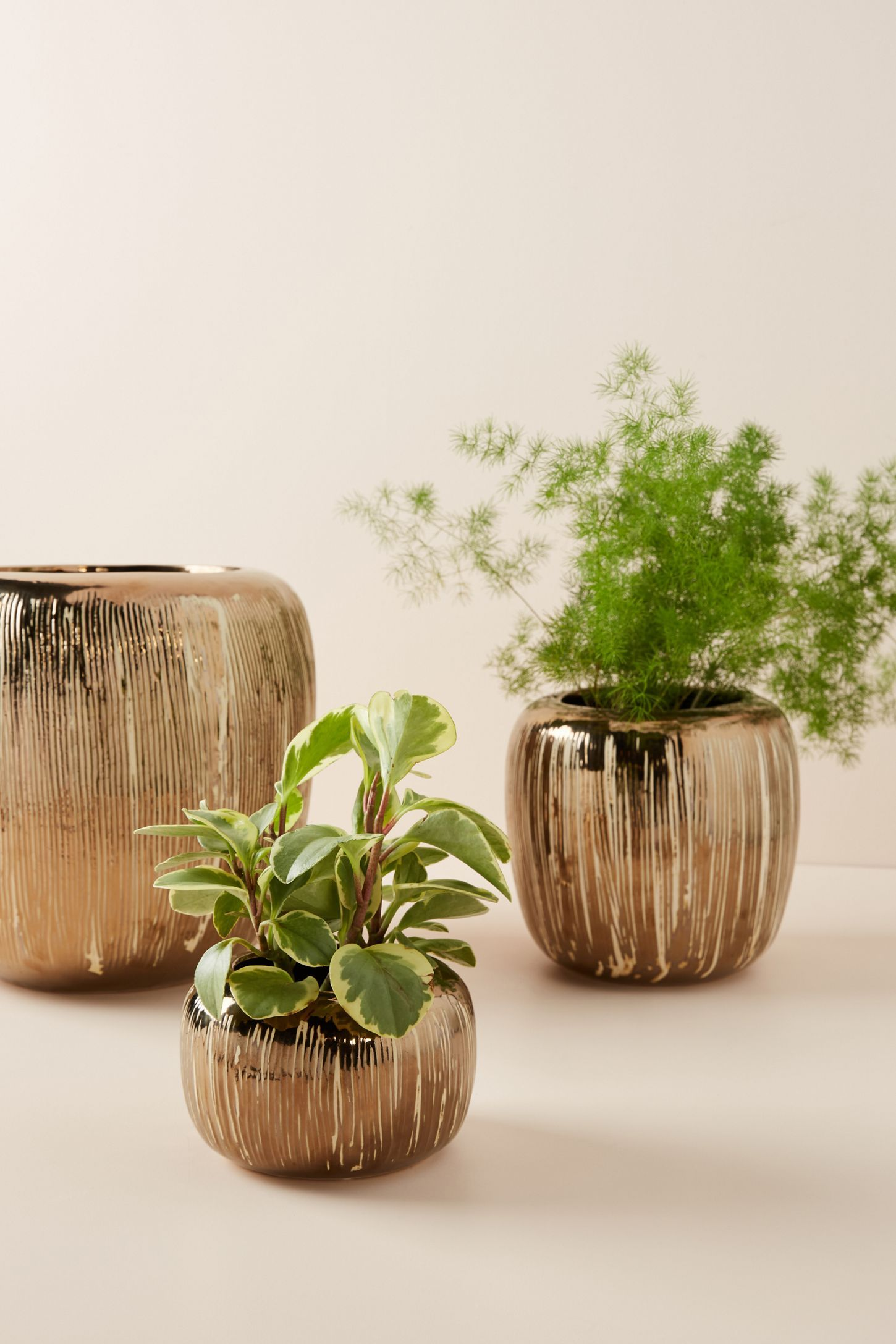 Copper Striped P*T P*T Eclectic Vases Water Features 640 x 480