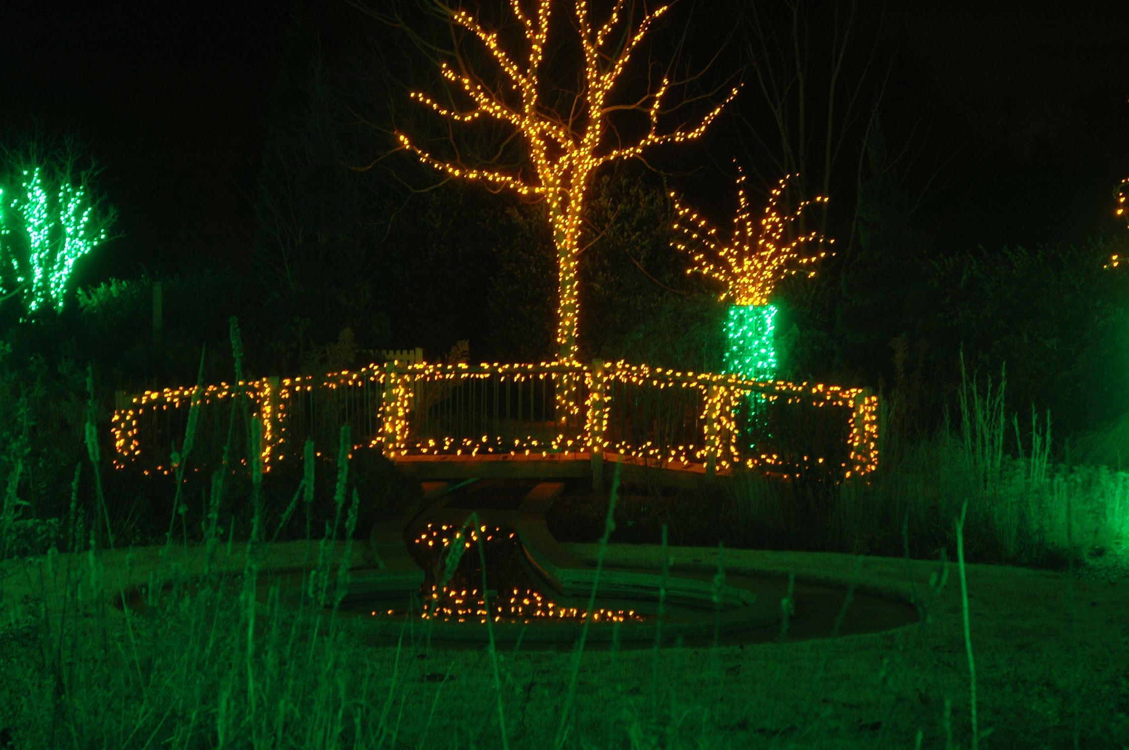 Be sure to walk along our light covered bridge during Holidays at