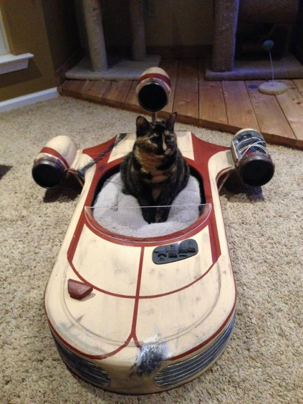 this landspeeder cat bed is the best cat bed ever more geeky cat furniture pic cool craft ideas pinterest starwars cat furniture and cat