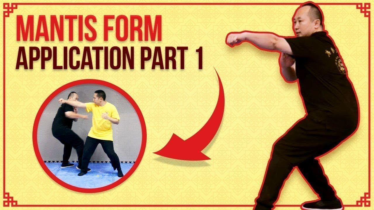 Kung Fu Techniques Praying Mantis Form Applications Part 1