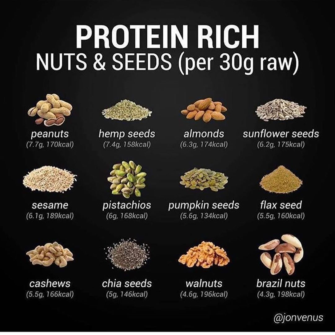 what has the highest amount of protein
