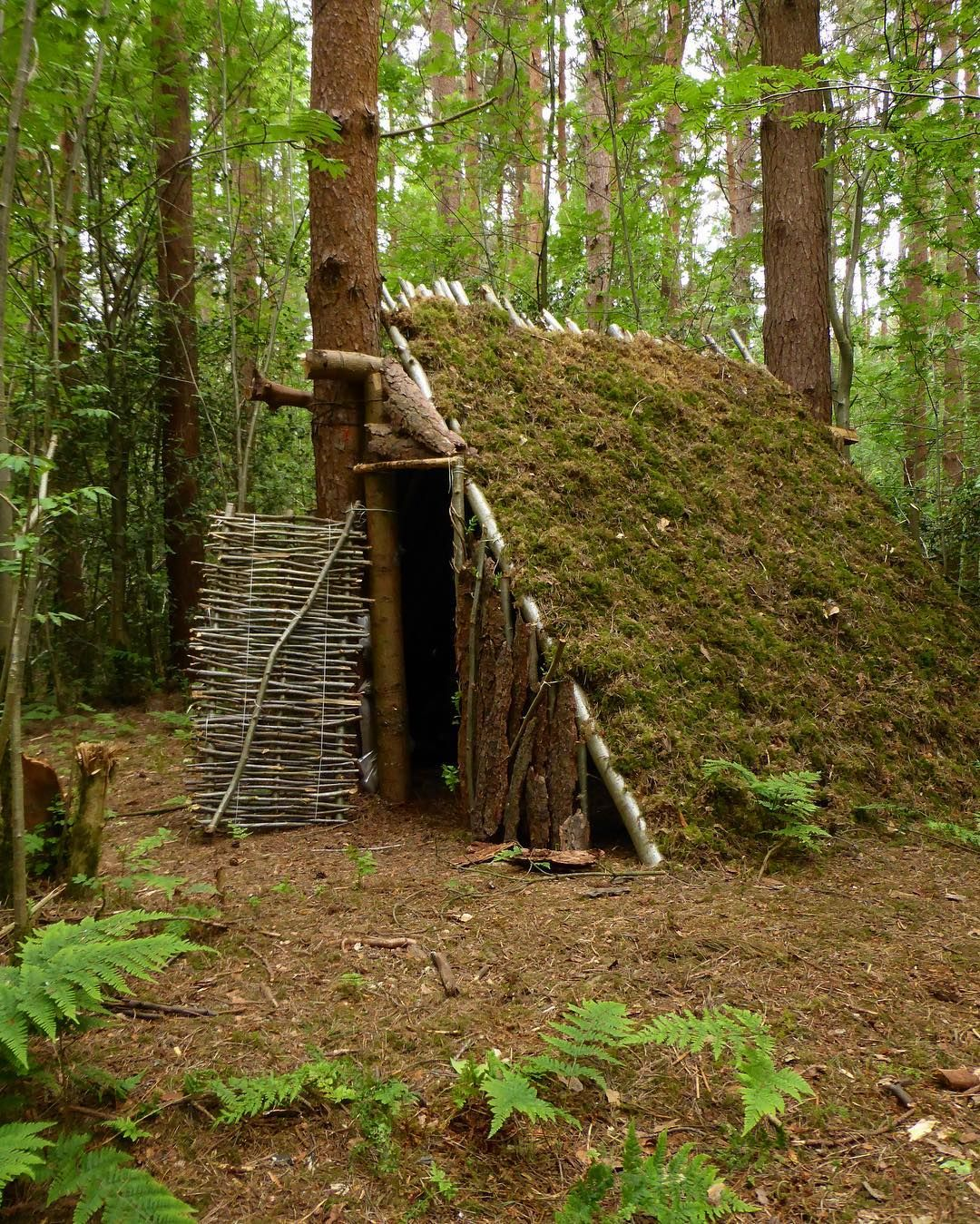 Bushcraft Survival Skills: Pin By Mark Sullivan-WellnessCoach On Survival
