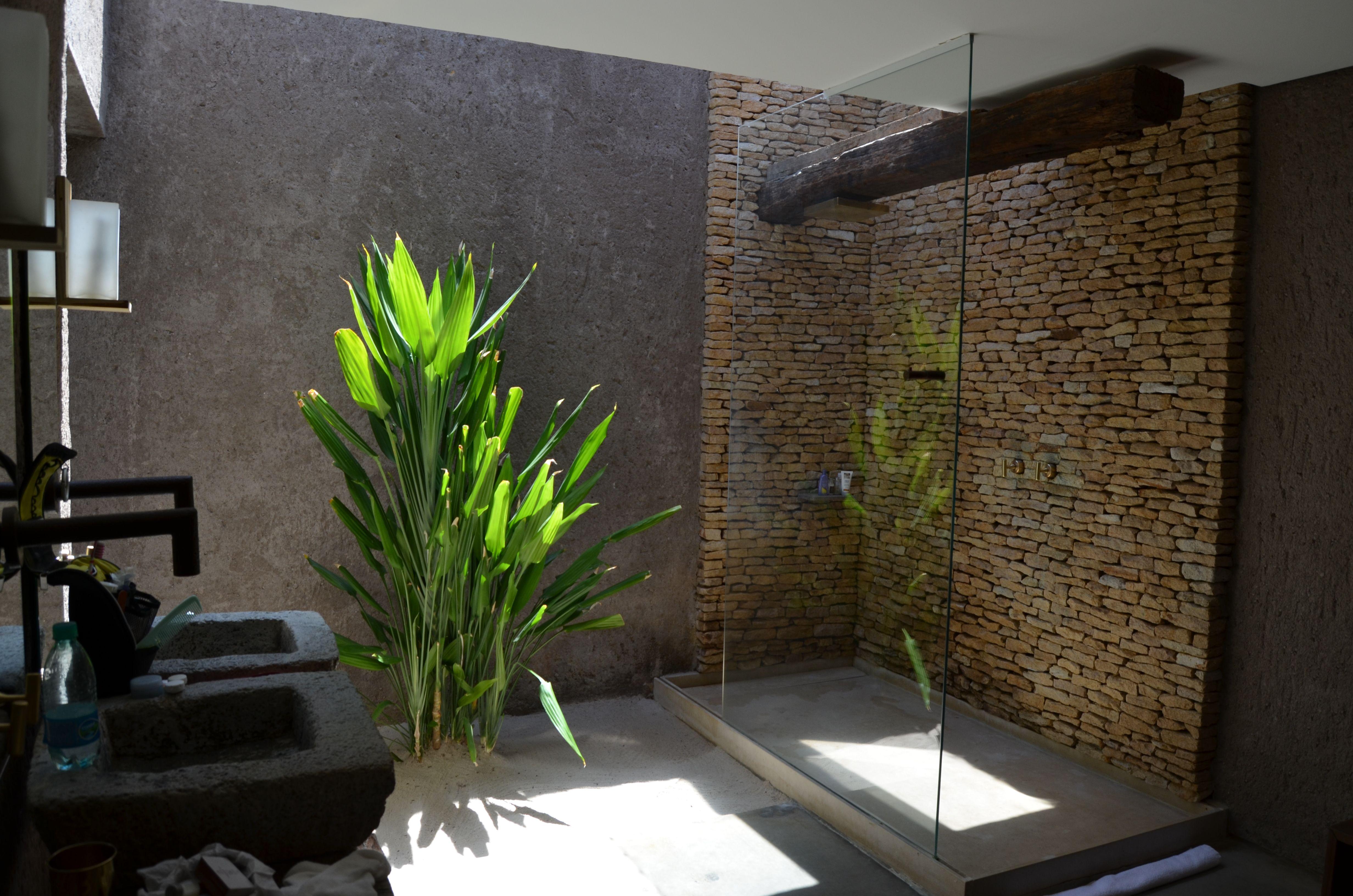 Badkamer plant ~ consenza for . | badkamer | Pinterest | Plants