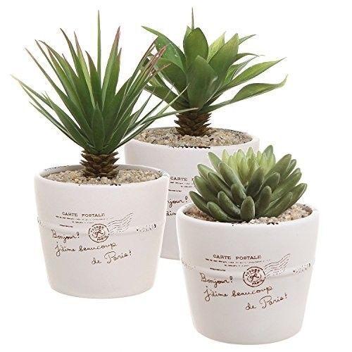 Ceramic-Pot-4-inch-White-Garden-and-Home-Decor-Herb-Planter-Pots-Set-of-3-New