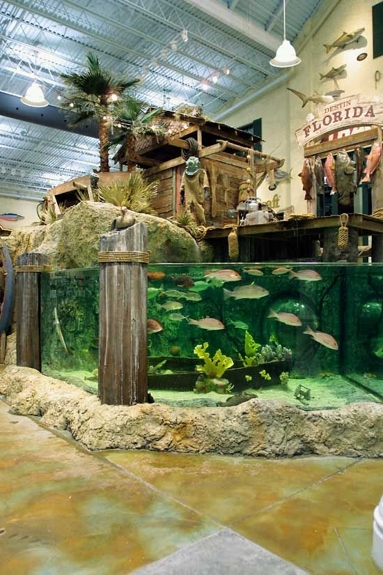 Fishing Stage At Destin Bass Pro In Florida Destin Outdoor Store Bass Pro Shops