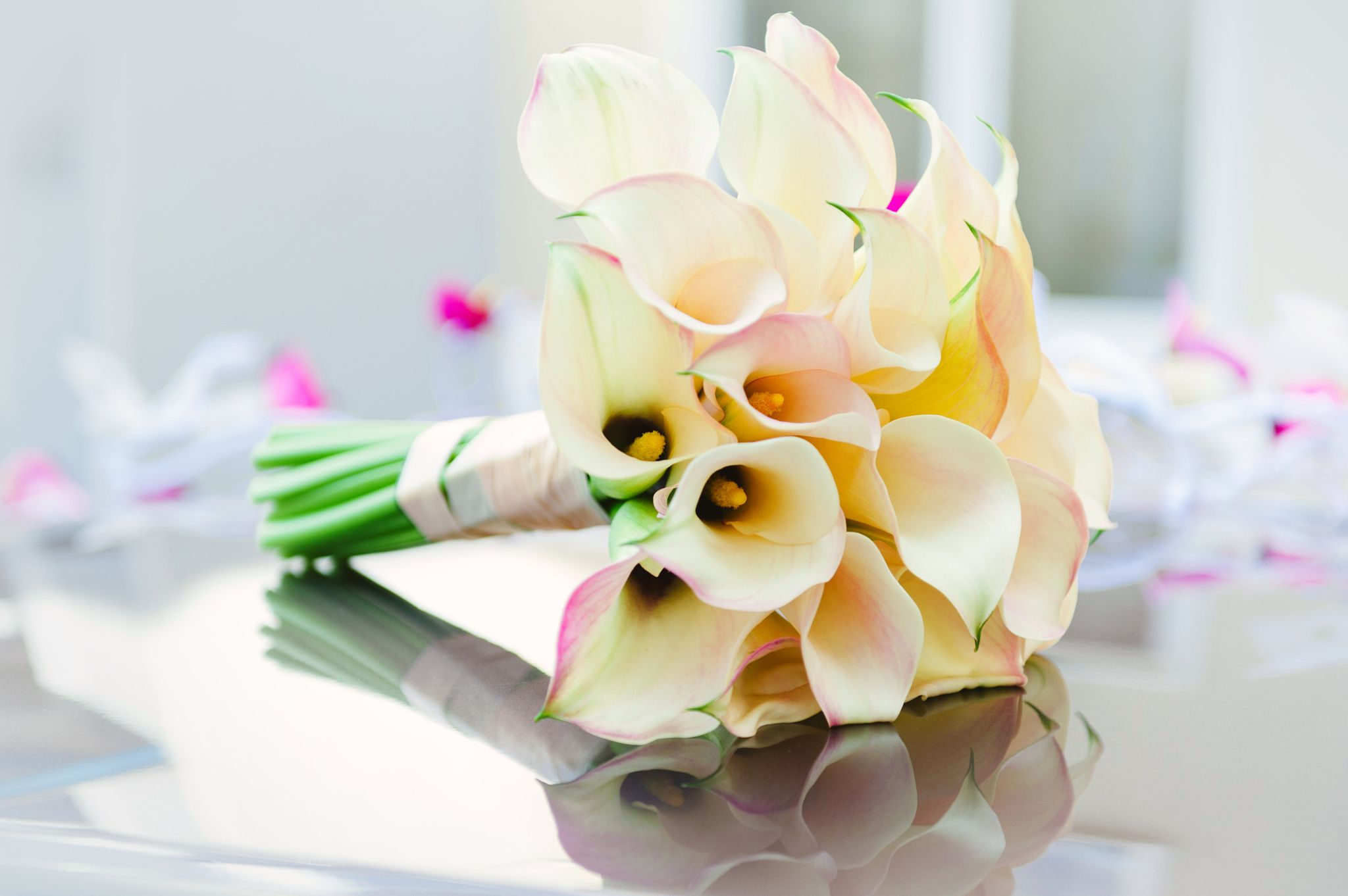 Pin by Kristine on plants calla lily Wedding bouquets