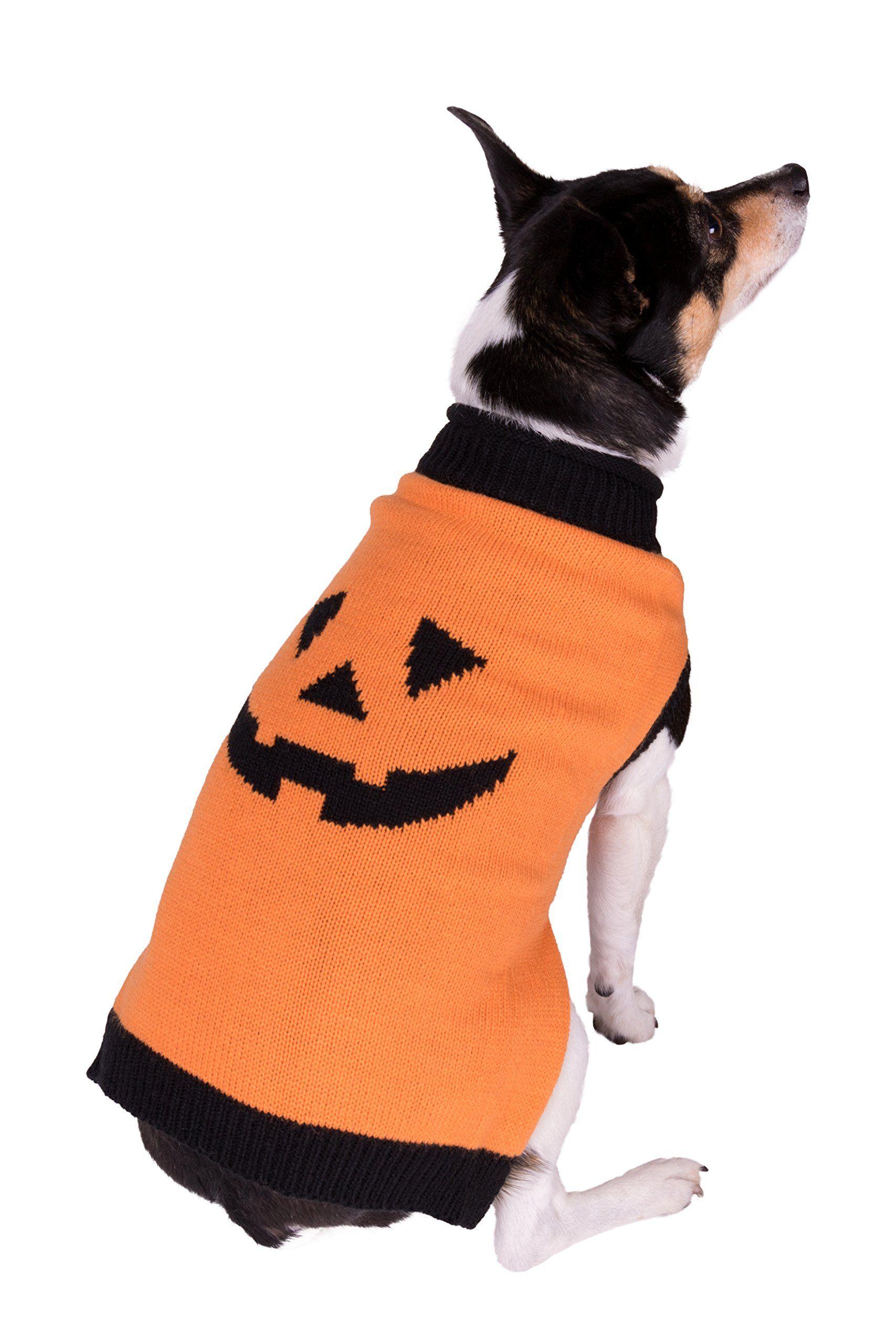 Orange and Black Halloween Smiling Pumpkin Holiday Pet Dog