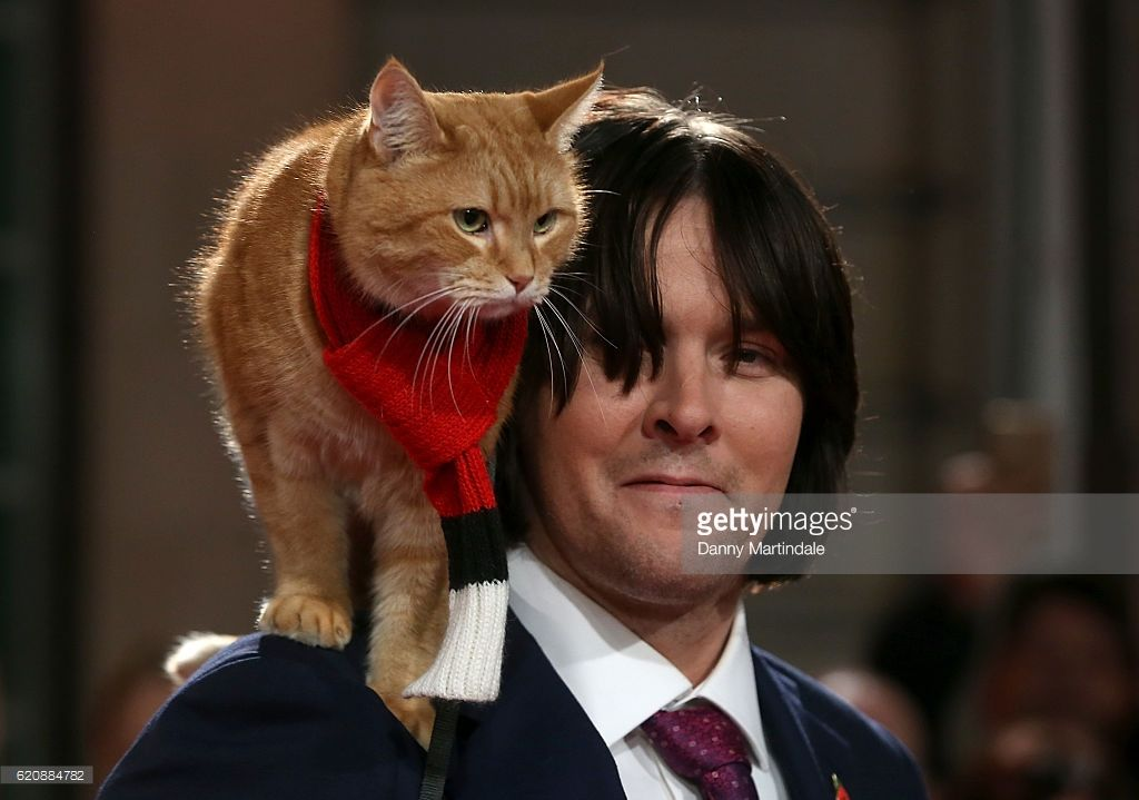 Uk Premiere Of A Street Cat Named Bob Pictures Gallery A Cat Named Bob Cat Names Street Cat Bob