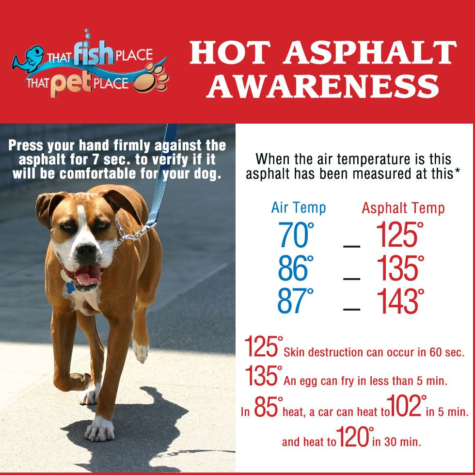 Hot Asphalt Awareness Press your hand firmly against the