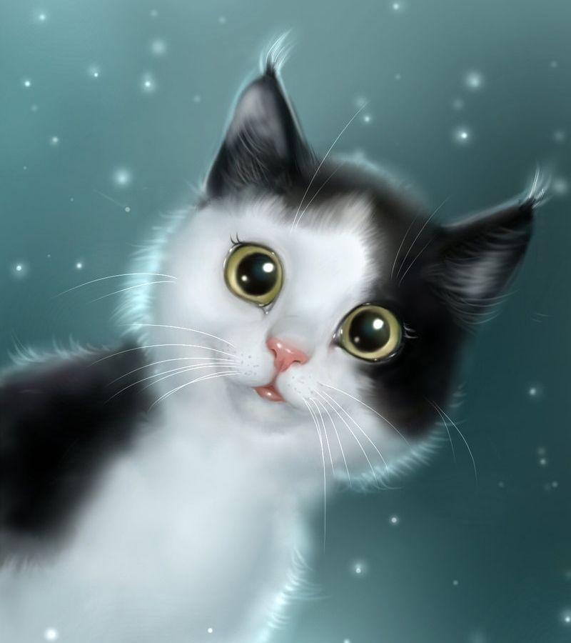 Картинки с рисованными кошками на телефон