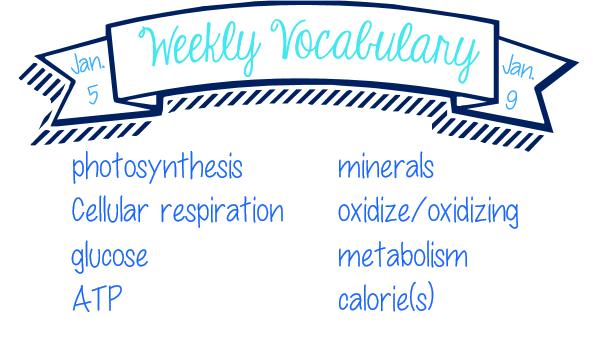 Week 18 Vocab List - Molecular Biology