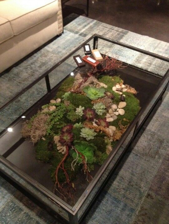 Terrarium coffee table from Four Hands.. #love - Terrarium Coffee Table From Four Hands.. #love Home Sweet Home<3