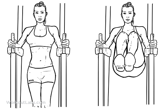 Knee Hip Raise Illustrated Exercise Guide