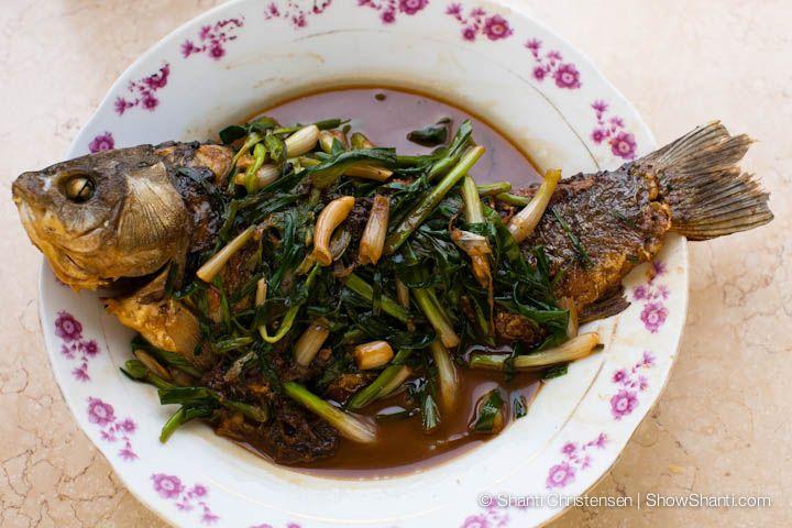 Braised Fish Recipe Ǻ¢çƒ§é±¼ Chinese Cookbook Braised Fish Recipe Braised How To Cook Fish