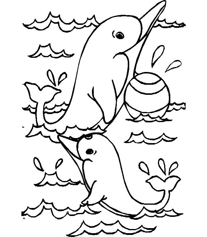 35 Free Dolphin Template Shapes Crafts Colouring Pages