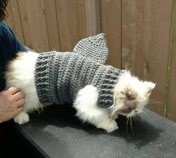 How To Crochet Steven's Striped Sweater Crochet Cat Sweater ... | 510x570