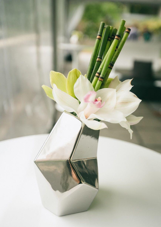 CUIDADOS SIMPLES PARA SUAS ORQUDEAS Pinterest Flores Bonitas y