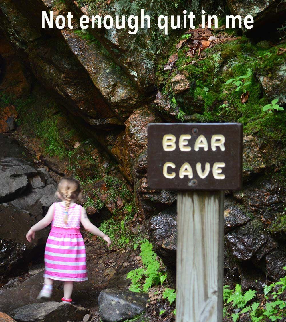 Dont fear the bears and dont quit do not fear