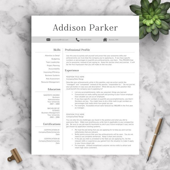 Professional Resume Template For Word And Pages   And  Page