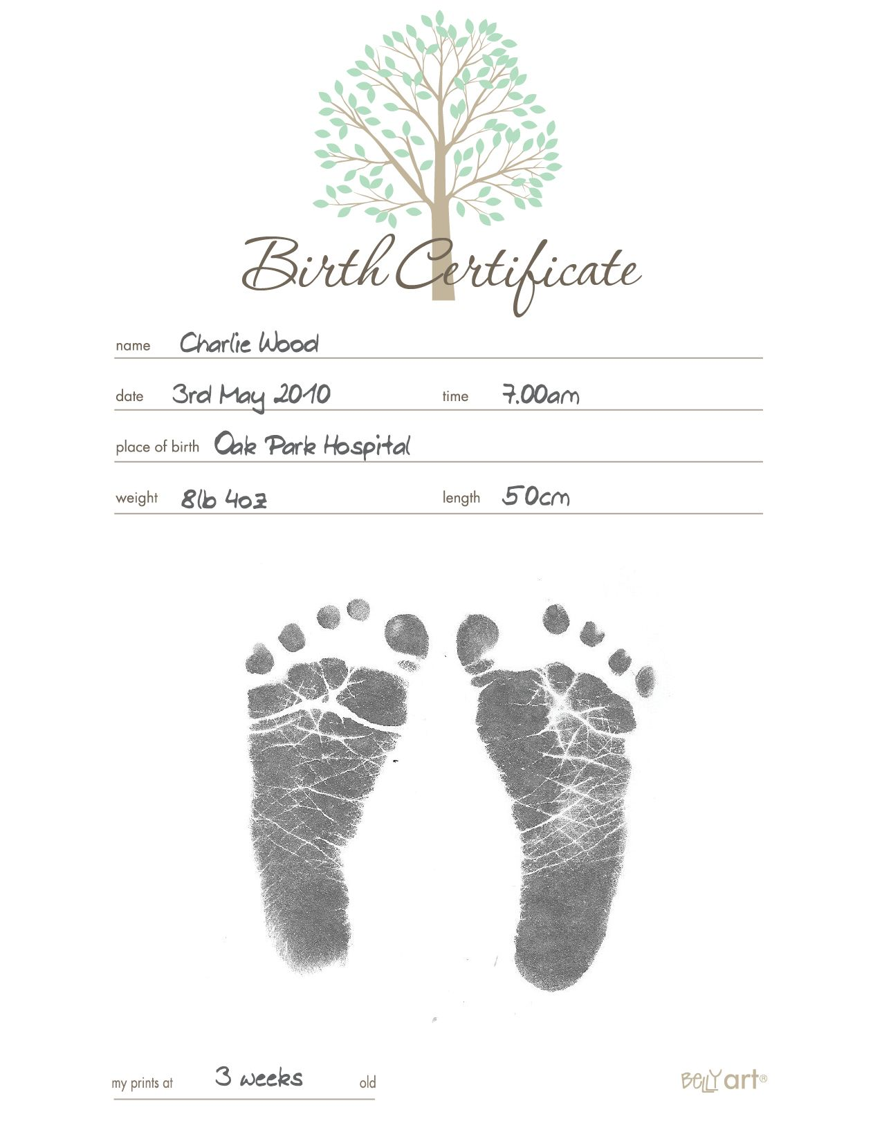 Belly Art Inkless Birth Certificate Apostille Birth Certificate