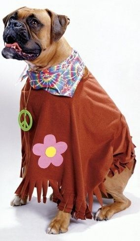 Your Dog S Trippin In This Groovy Costume Hippie Dog Costume Pet Costume Product Wc18116hp Pet Halloween Costumes Pet Costumes Dog Costume