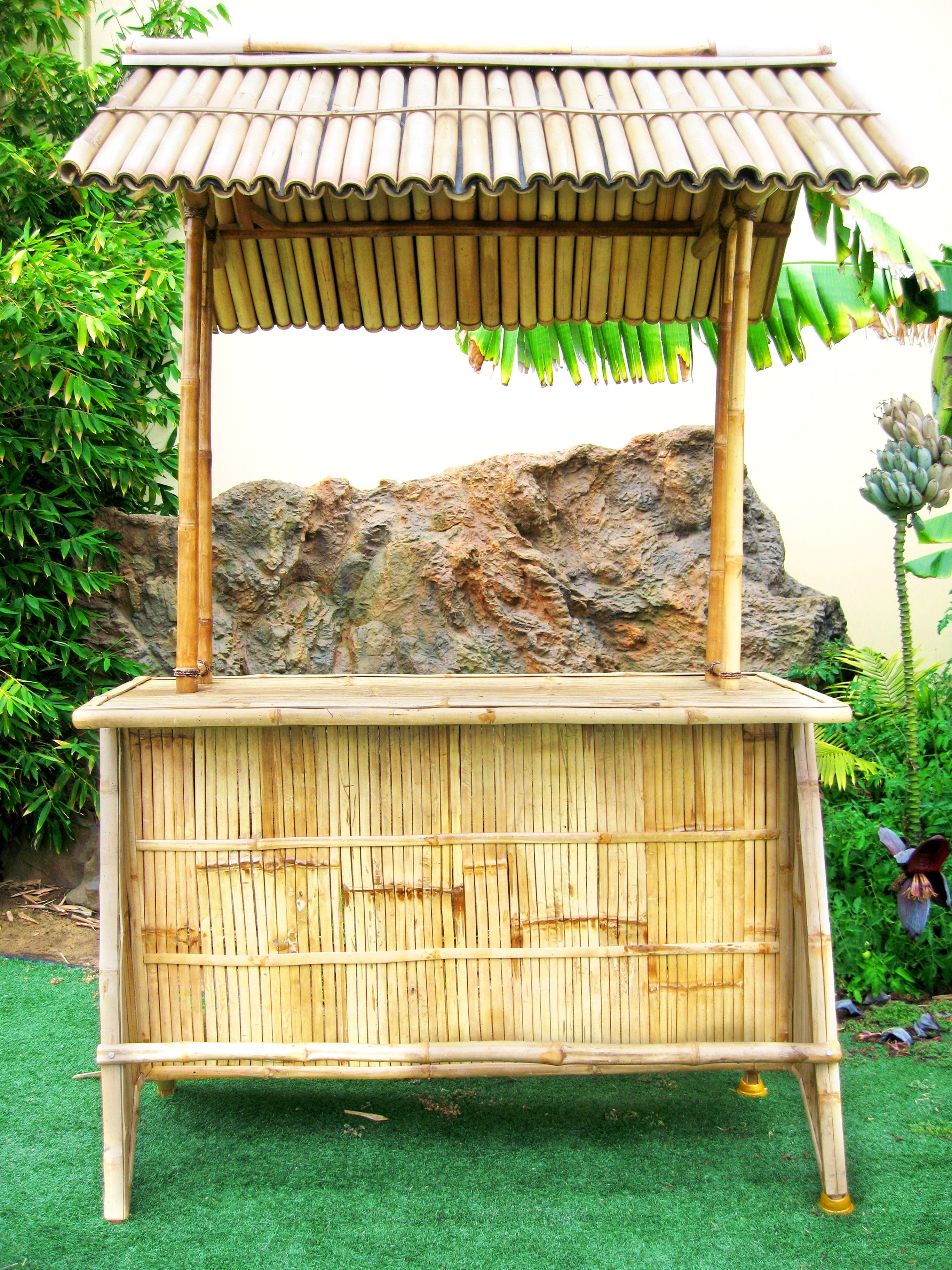 Bamboo Ideas For Backyard Backyard Design And Backyard Ideas