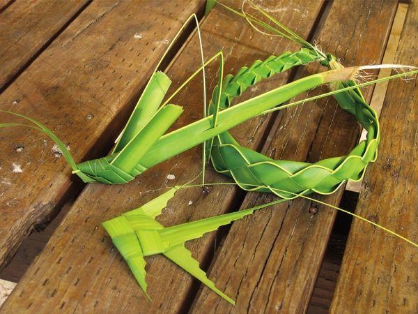 Palm Crafts Culture Class Coconut Class T2m Pinterest Leaf