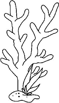 Coral Drawing For Kids Google Search Coloriage Mer Coloriage Pochoir Silhouette
