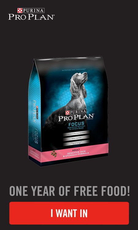 Don T Miss Out On Your Opportunity To Score Purina Proplan For A Year Pet Supplies Plus Purina Free Dog Food