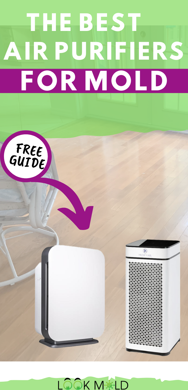 The Top 5 Air Purifiers For Mold in 2020 Air purifier