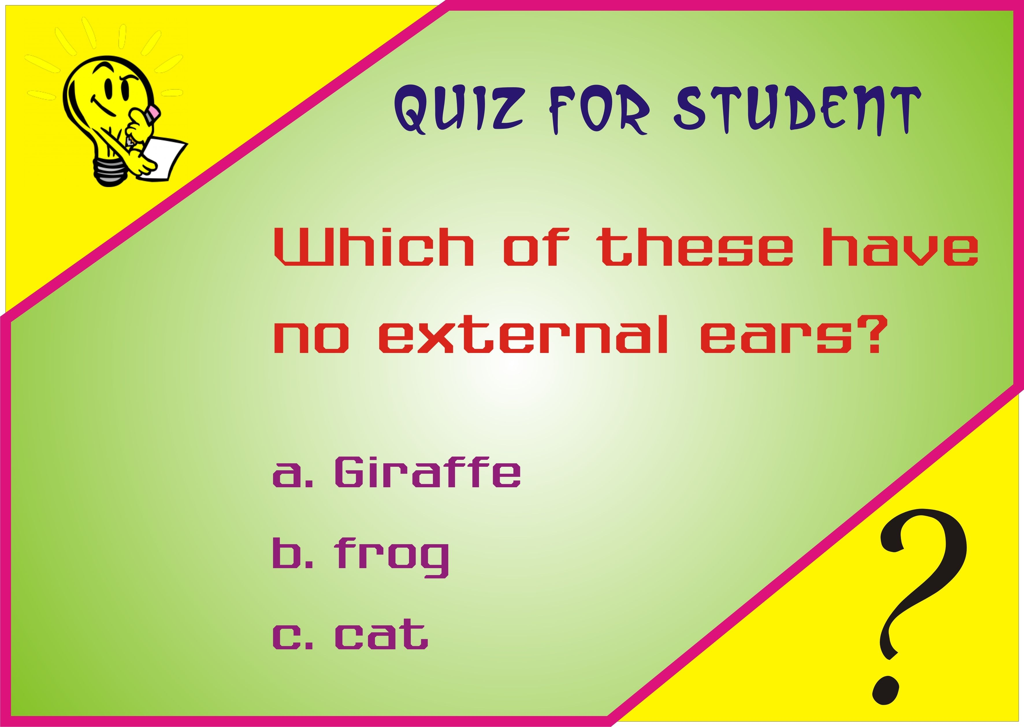 Interesting General Knowledge Quiz For Ids Puzzles For Kids Quiz Knowledge [ 2517 x 3545 Pixel ]