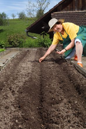 Preparing Your Soil For Planting Tomatoes In The Home 640 x 480