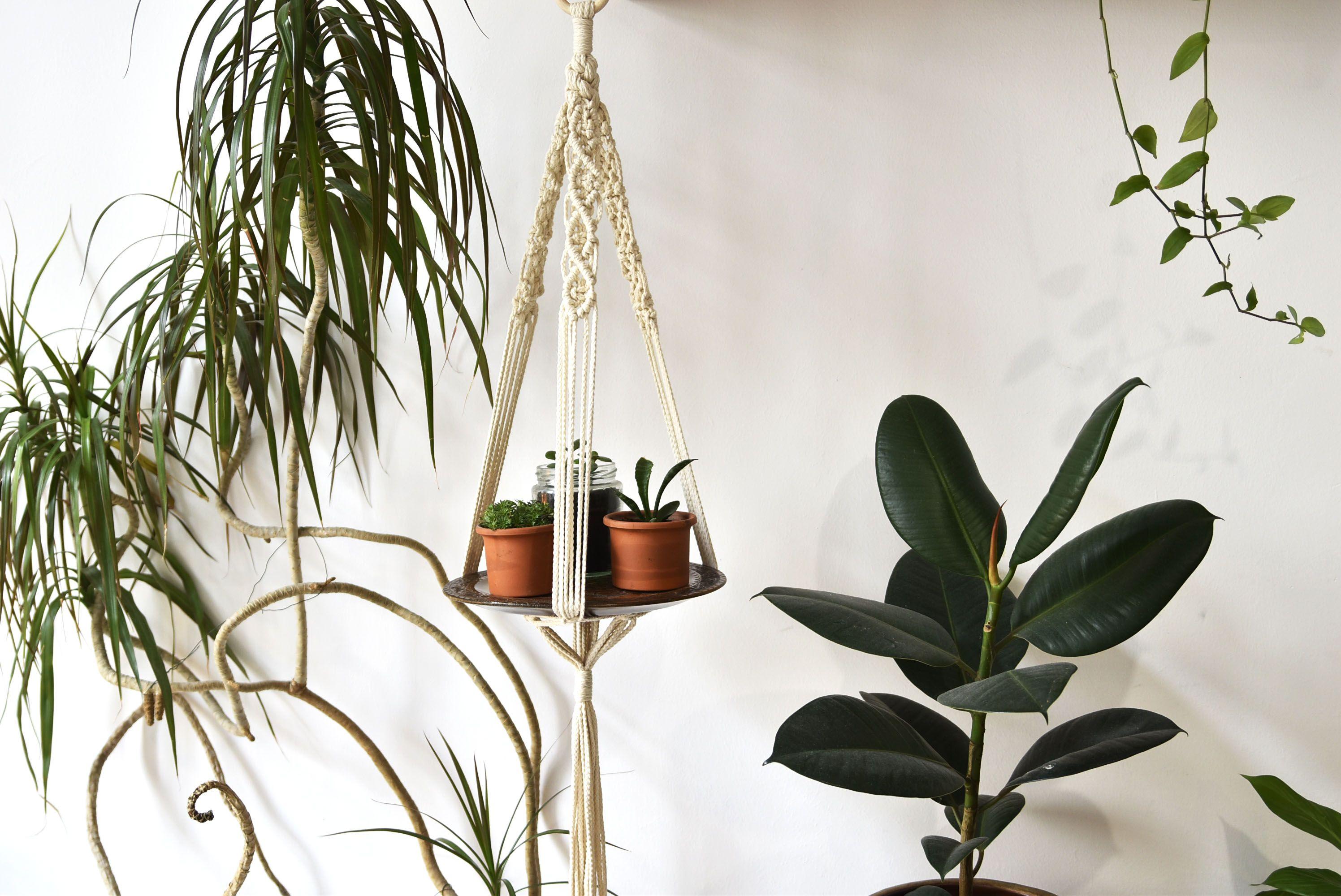 Macram Plant Hanger Vega