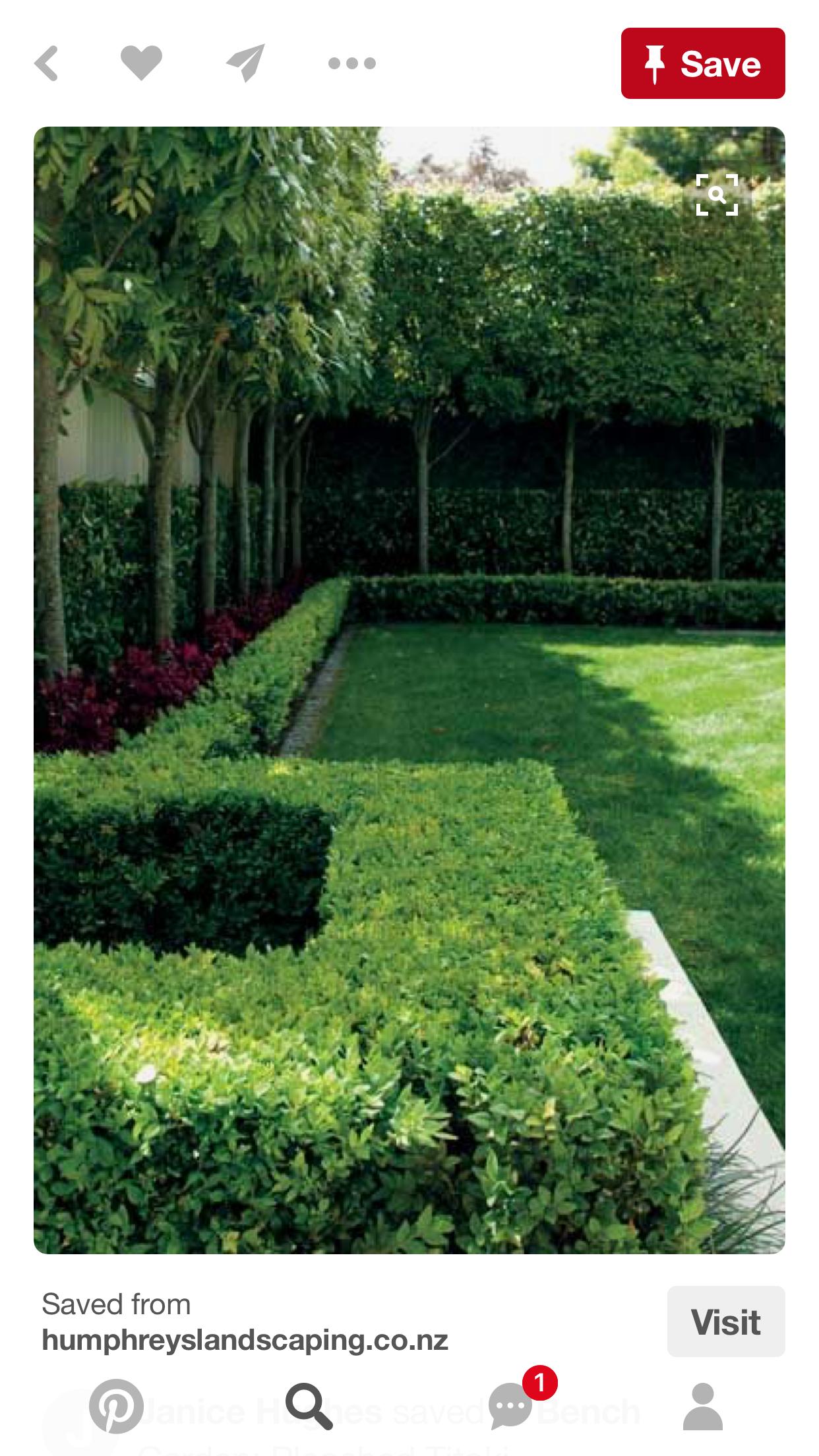 Pin Von Aeni Auf Gartengestaltung Gartenhecke Garten
