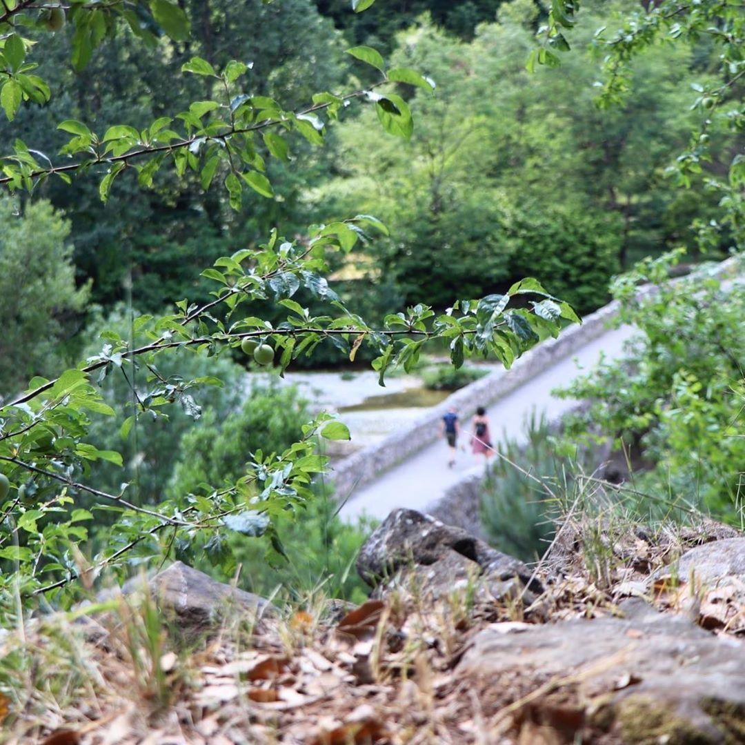 115 Mentions J Aime 0 Commentaires Cevennes Tourisme Cevennestourisme Sur Instagram Le Pont Des Camisards Pont Situe A Cote Du Village De Mialet Il E