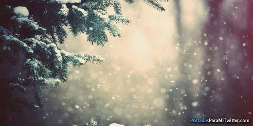 Winter / Invierno