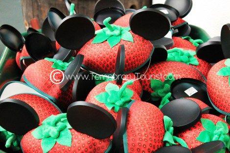 International Flower and Garden Festival in Epcot at Walt Disney World 2013 #MickeyMouse #MouseEars