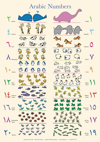 Arabic Numbers Poster Learning Arabic Islamic Kids Activities Preschool Activity